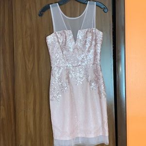 NWT BCBG Maxazria Blush Dress Size 2